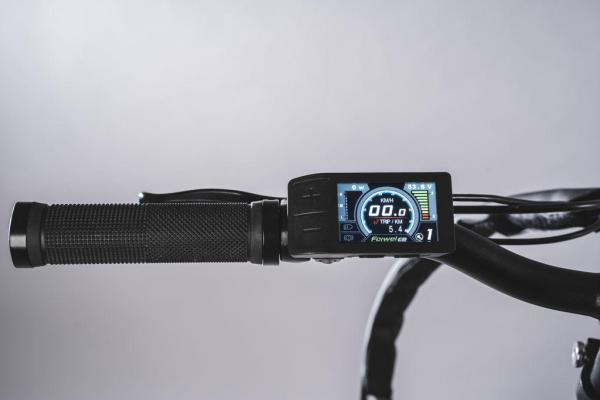 bici pieghevole pedalata assistita display colore