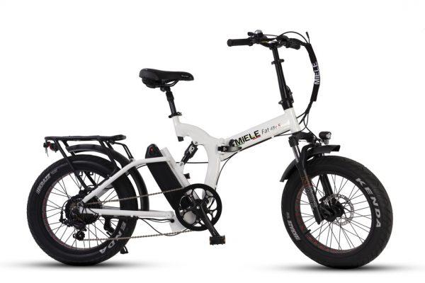 bici a pedalata assistita potente