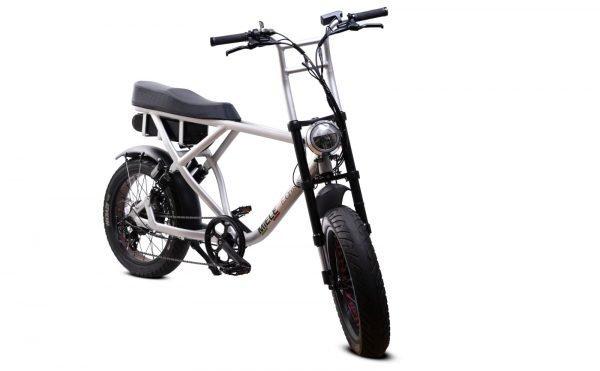 bici elettrica e cross ant