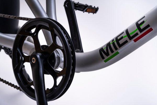 bici elettrica e cross corona ant