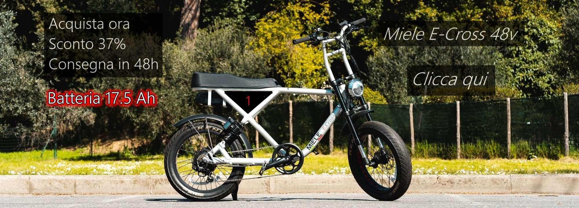 bici elettrica biposto potente 500 w